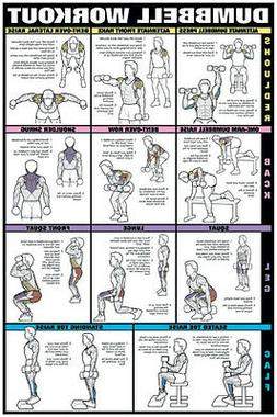 """Dumbbell Workout II 24"""" x 36"""" Paper Poster-NFC13A  by Fitnus"""