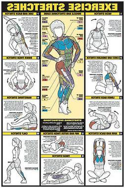 "Exercise Stretches 24"" x 36"" Paper Poster -NFC11_A  by Fitnu"