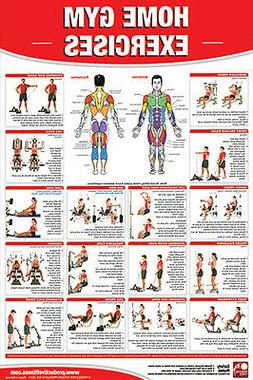 HOME GYM EXERCISES Professional Fitness Gym Wall Chart POSTE