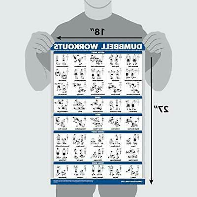 dumbbell workout exercise poster body building guide