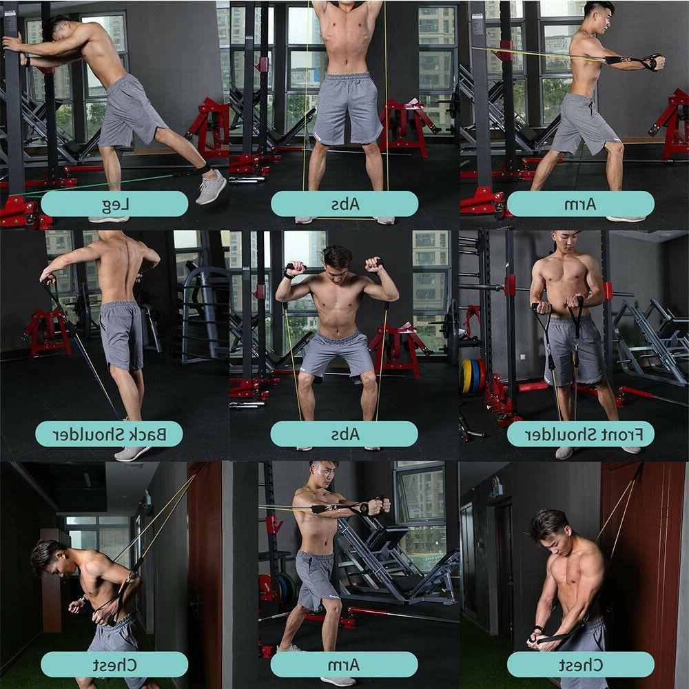 Update 11 Gym Exercise Training