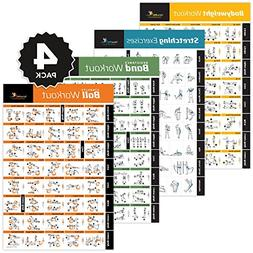 4-Pack Laminated Home Gym Exercise Posters  Build Muscle, To